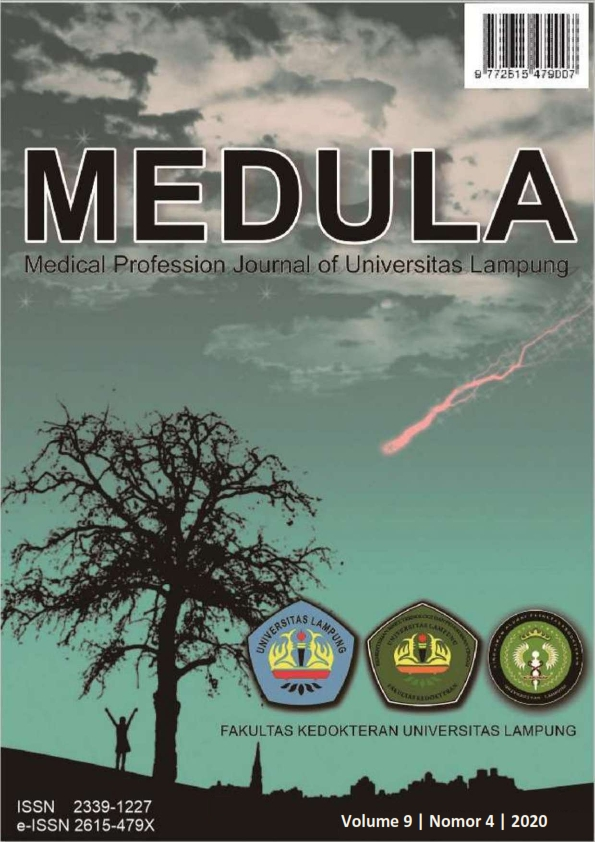 View Vol. 9 No. 4 (2020): Medula